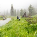 Hiking in Canyon Creek Valley.- Hiking in the Trinity Alps