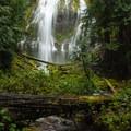 Lower Proxy Falls.- Exploring Oregon Watersheds: Adventure Brews