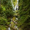 Upper Proxy Falls.- Exploring Oregon Watersheds: Adventure Brews