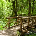 The bridge across Gorton Creek on the Gorge Trail #400.- Hiking in the Columbia River Gorge
