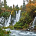 Colors changing below Burney falls.- 15 Perfect Day Hikes to Find Fall Foliage