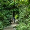 Climbing Old Buck.- Mountain Biking in British Columbia