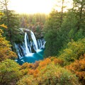 Fall foliage from the McArthur-Burney Memorial State Park.- McArthur-Burney Falls Memorial State Park