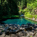 McKenzie River Trail: Tamolitch Falls formerly spilled over here.- Oregon's 75 Best Day Hikes