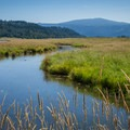 Steigerwald Lake National Wildlife Refuge with Mount Hood (11,250 ft) in the distance from Gibbon Creek Wildlife Art Trail.- 30 Favorite Hikes Near Portland
