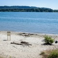Cottonwood Beach on the north shore of the Columbia River.- 31 Best Beaches + Swimming Holes in-and-around Portland, Oregon