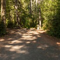 William M. Tugman State Park.- A Guide to Camping on the Central Oregon Coast