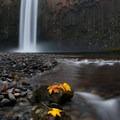 Abiqua Falls in autumn.- Abiqua Falls