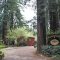 Welcome to Fern River Resort, located just up the road from Santa Cruz in Felton.- Adventurer's Guide to Santa Cruz