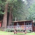 Cabins are tucked in under the redwoods at Fern River Resort.- Adventurer's Guide to Santa Cruz