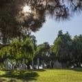 Presidio Park.- Adventurer's Guide to San Diego
