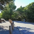 Typical campsite at San Mateo Campground.- Guide to Camping on the Southern California Coast