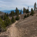 Rising above the tree line on the Vivian Creek approach to San Gorgonio.- 10 Great Hikes in the San Bernardino Mountains