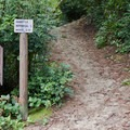 The trailhead from the adjacent day use area at Alder Dune Campground provides access to the Sutton Trails.- A Guide to Camping on the Central Oregon Coast