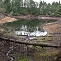 One of the small lakes in the Alder Dune campground.- A Guide to Camping on the Central Oregon Coast