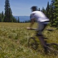 Sourgrass Meadow along the Alpine Trail.- Oregon Fall Adventures