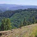Mountain Bikers will enjoy views like this one of Diamond Peak (8,743 ft) from Oakridge's Alpine Trail.- Oregon Fall Adventures