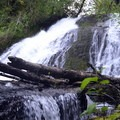 Green Peak Falls.- Exploring Oregon's Coastal Waterfalls