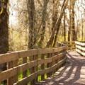 A small boardwalk in Ankeny National Wildlife Refuge.- National Wildlife Refuge System