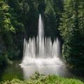 An impressive water display at the Butchart Gardens.- The Butchart Gardens