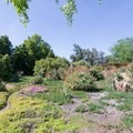 African garden at Los Angeles County Arboretum.- Botanical Gardens Blooming Across the Country