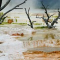 Mammoth Hot Springs in Yellowstone National Park.- National Park System