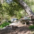 Typical campsite along Millard Canyon Creek.- A Guide to Camping Near L.A.