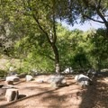 Millard Campground.- A Guide to Camping Near L.A.