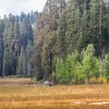 Crescent Meadow.- California's 60 Best Day Hikes