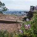 Corona Heights Park.- City Parks You Definitely Need to Visit
