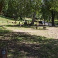 Live Oak Campground.- Guide to Bay Area Camping