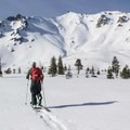Escaping the tree line en route to Lassen's north ridge.- Where to Find Great Backcountry Skiing in Our National Parks