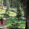 Bear Lakes Loop.- California's Best Lake Camping