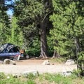 Typical campsite at Lakes Basin Campground.- California's Best Lake Camping