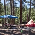 Typical site at Meek's Bay Campground.- California's Best Lake Camping