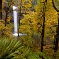 Fall foliage at South Falls, Silver Falls State Park.- Oregon Fall Adventures