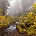 Fall foliage surrounds Shitke Lake.- Jefferson Park Hike via Jefferson Ridge