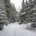 The beginning of the trail to Lake Placid.- 5 Must-Do Adirondack Snowshoe and Ski Trails