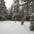 A trail intersection near the Marcy Dam.- 5 Must-Do Adirondack Snowshoe and Ski Trails