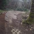 A bank reverse feature on the Sandy Ridge Trail near Mount Hood.- Oregon Fall Adventures
