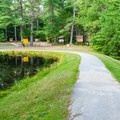 Trail to Archery Pond and the archery range in Bear Brook State Park.- Best New Hampshire Towns for Family Adventure