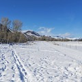 Wide open beauty in and out of town on the Wood River Trail.- 3 Days of Winter Adventure in Sun Valley, Idaho