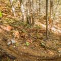 Having some fun on a berm on Billy Epic Trail.- Mountain Biking in British Columbia