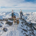 Summit photo on Aneroid Peak.- A Guide to Summer Adventuring with Your Dog