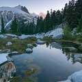 An alpine reflection.- A Guide to Summer Adventuring with Your Dog