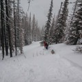 Enjoying the open tree-skiing on flanks of Table Mountain.- Backcountry Skiing in Washington