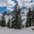 Dramatic views and steep terrain near Snow Lake.- Backcountry Skiing in Washington