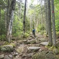 Steep and rocky paths are the norm here.- Adirondack Fire Tower Hikes