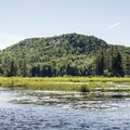 Entering Hitchins Pond.- Three Adirondack Paddling Adventures for your Bucket List