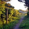 The path to the beach from Bullards Beach State Park Campground.- 3-Day Itinerary for Bandon, Oregon